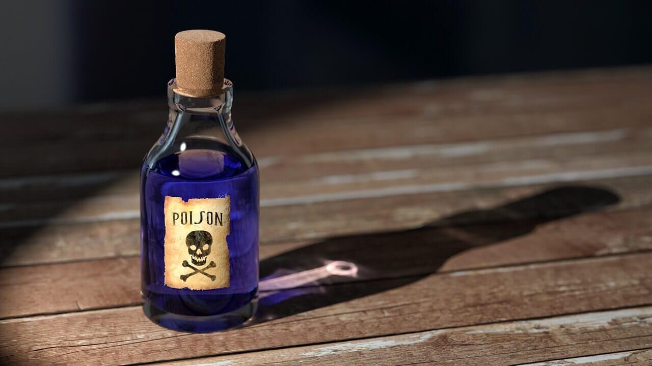 Veneno para ratas - Cómo elegir y los mejores venenos para ratas